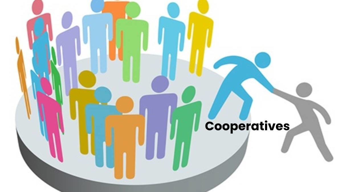 What are Cooperatives? – Types, Structure, and More