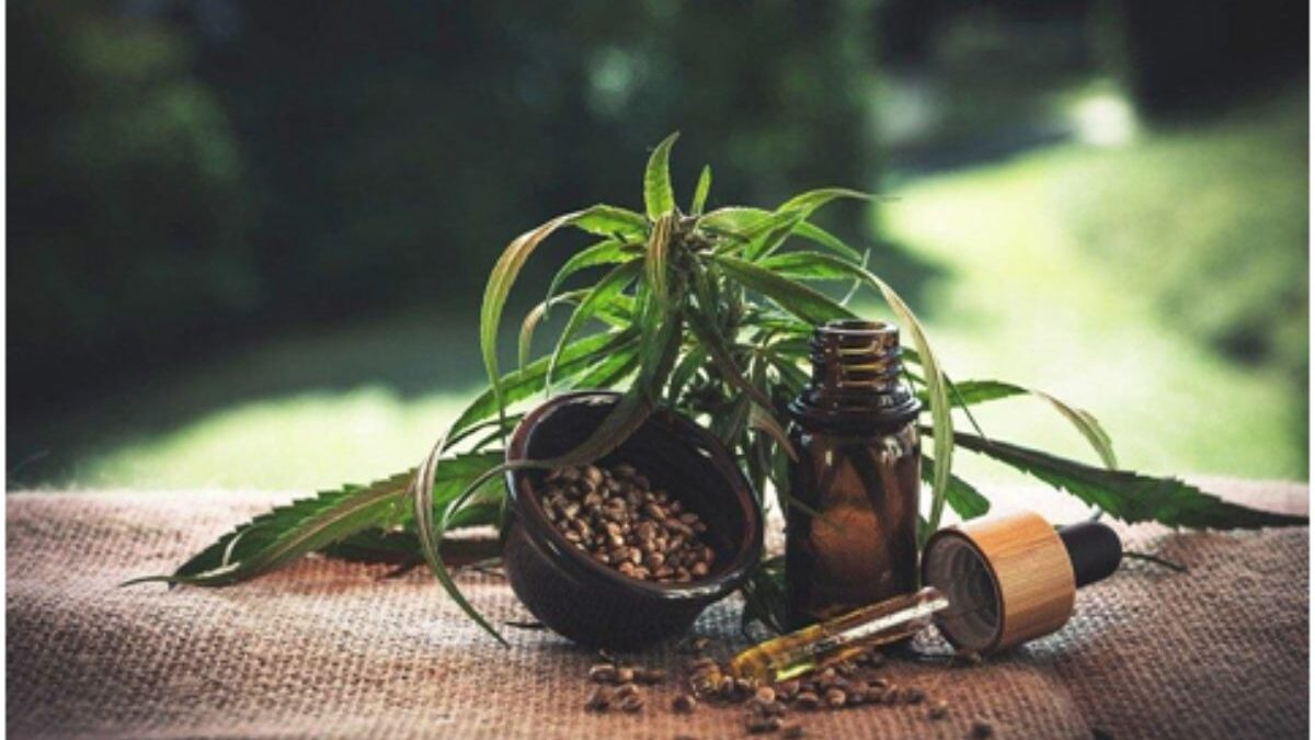 What Is All The Fuss About CBD Oil?